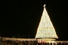 Vivo City Christmas Tree 2008