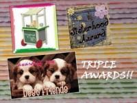 Triple Awards !
