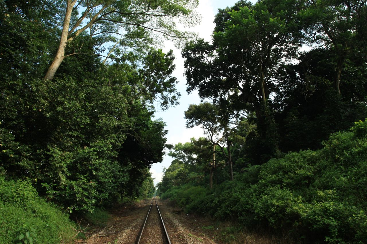 Railway Tracks Exploration Part 3 – Bukit Timah to Ten Mile Junction