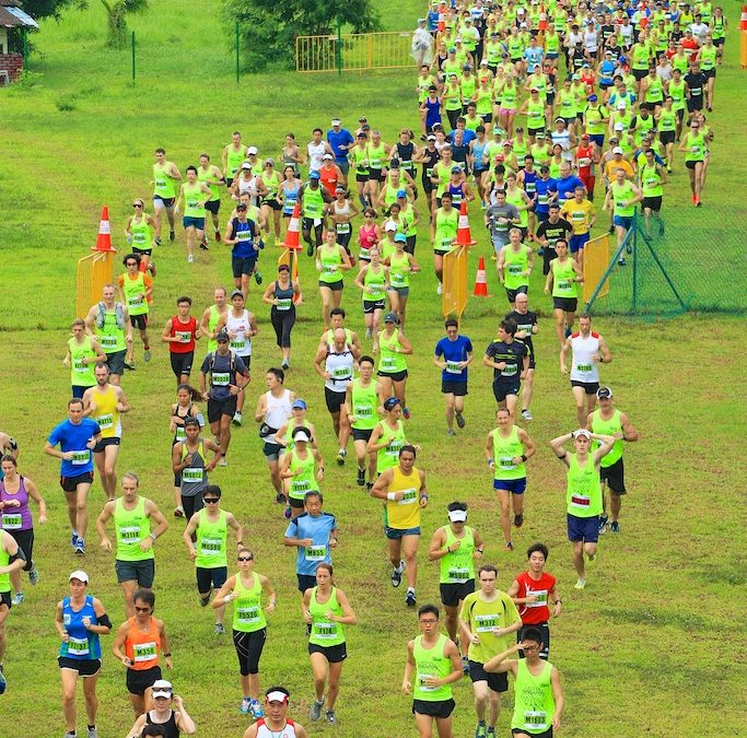 The Green Corridor Run 2014