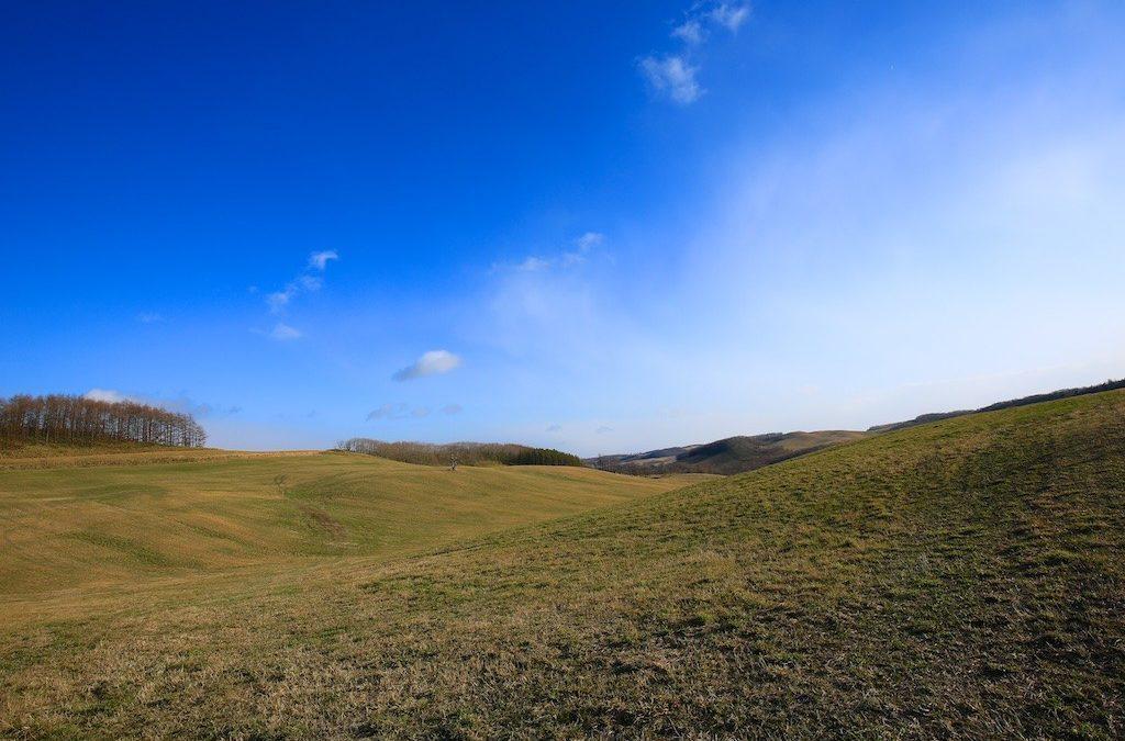 One Tree Hill – Somewhere in Eastern Hokkaido
