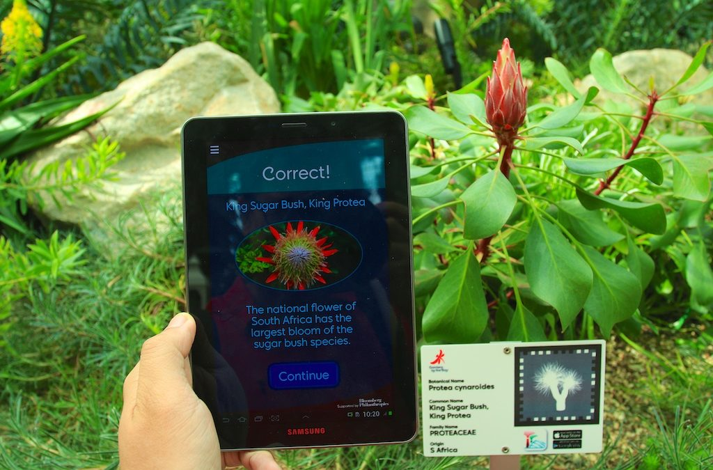 Explore Gardens By The Bay with Mobile App!