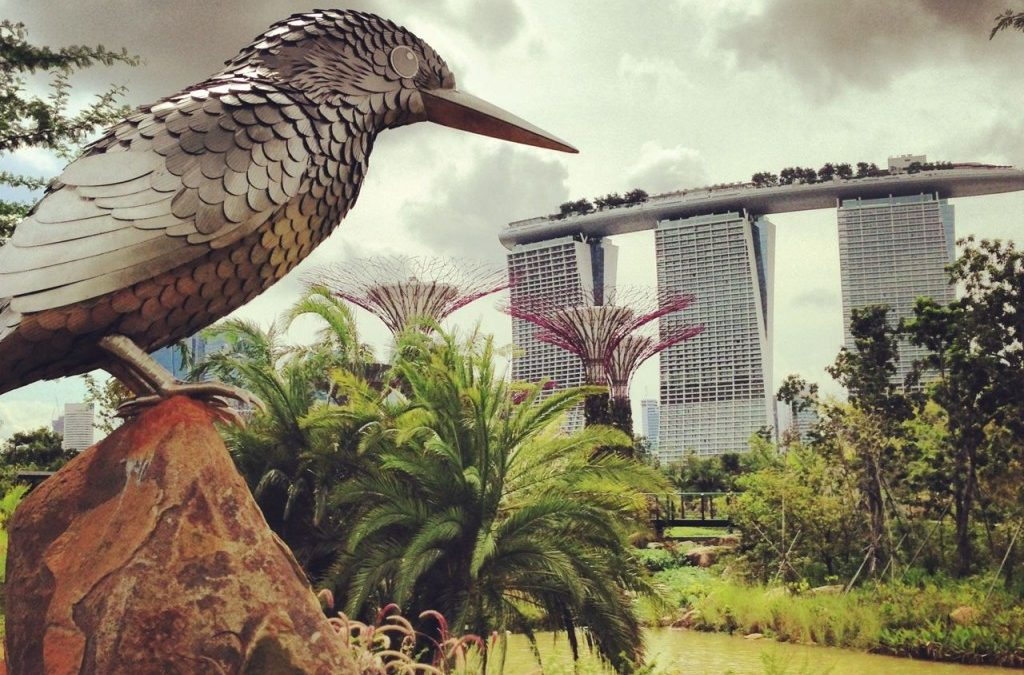Outdoor and Bird Photography Adventure @ Satay By The Bay